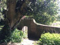 Fyne Court Wild Gardens